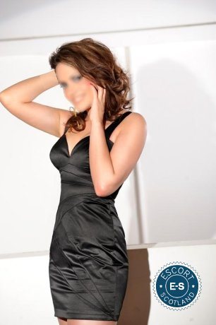 Book a meeting with Brittish Victoria in Edinburgh today