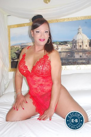 Book a meeting with TS Hannah in Inverness today