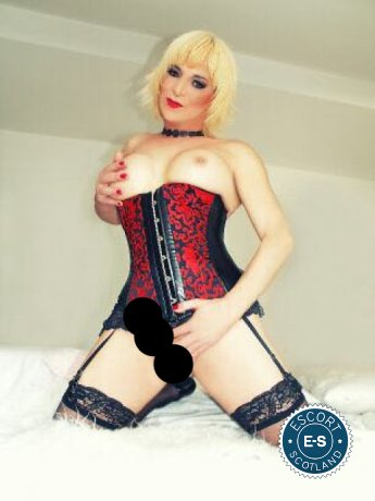 Book a meeting with TS Niky in Glasgow City Centre today
