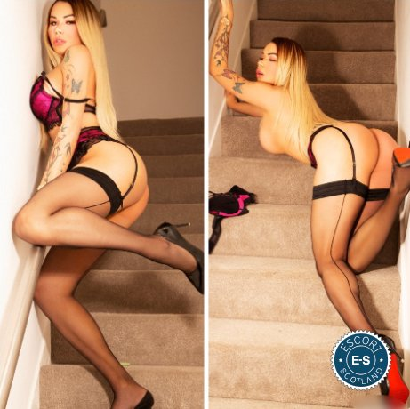 TS Kamila Victoria is a top quality Brazilian Escort in Falkirk Town